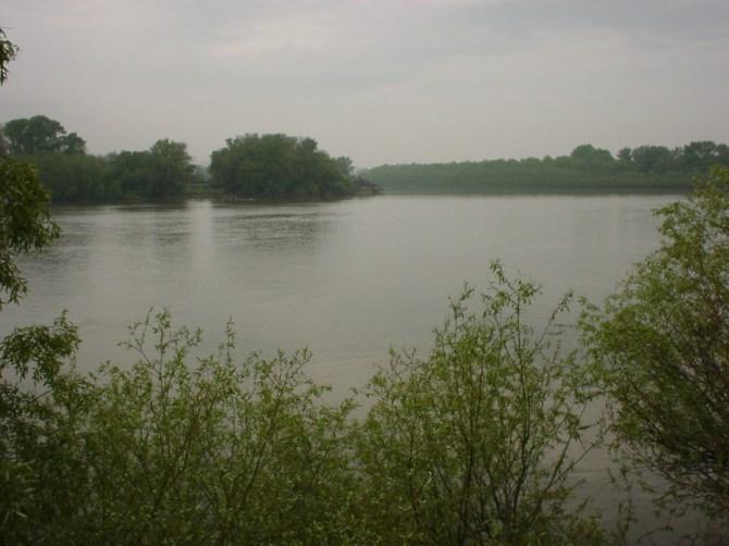 031_Zusammenfluss von Donau und Save