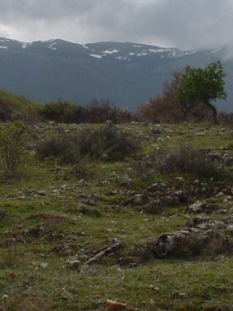 099_Südlich Ohrid